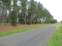 The Anderson Tract
